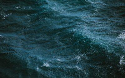 Podcast Episode #27: Seekrank – und jetzt?